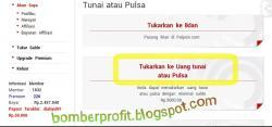 Bukti Pembayaran PTC Pulpoin Indonesia