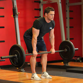 Membangun Otot