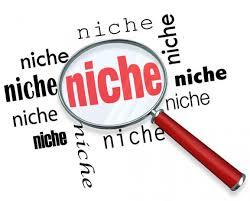 Memilih Niche