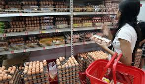 Bisnis Berbelanja Grocery
