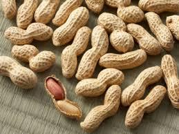 Bisnis Pengolahan Minyak Kacang Tanah